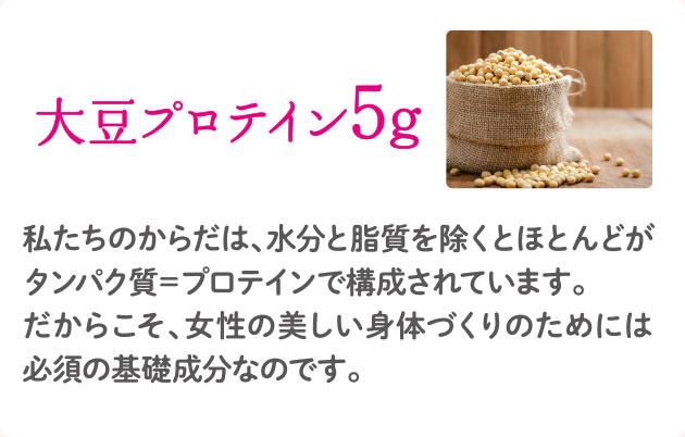 大豆プロテイン5g