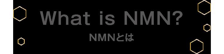 NMNとは